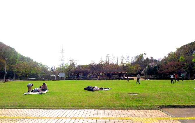 さぎ山記念公園 | 浦和美園.com