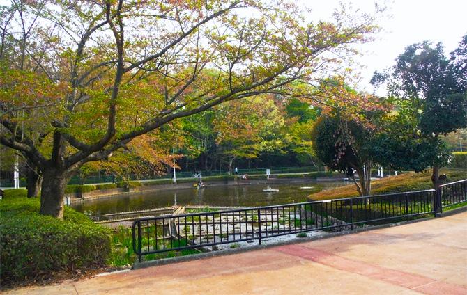 さぎ山記念公園  スポット・イベントを検索する SEARCH